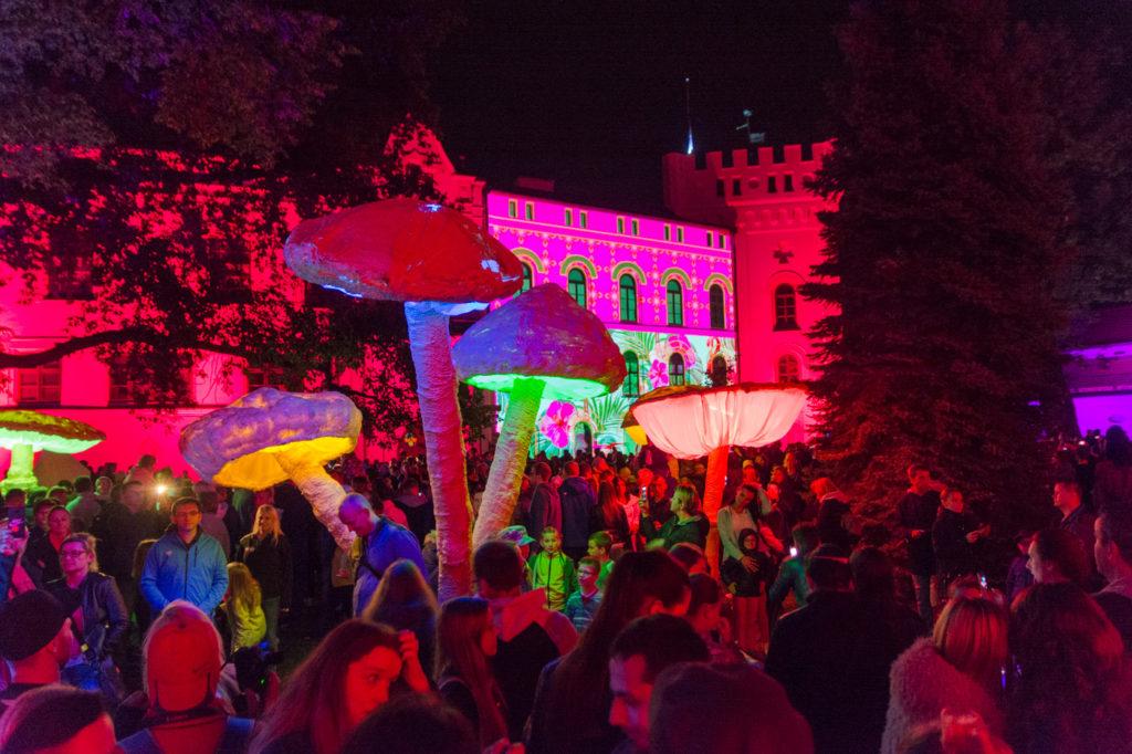 iluminacja Wrocław